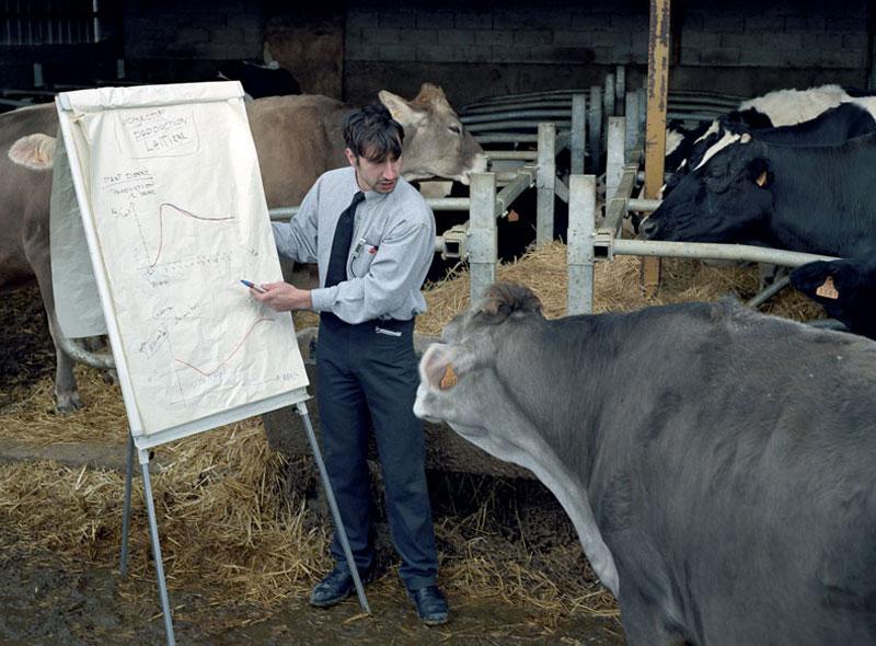 milk_production1