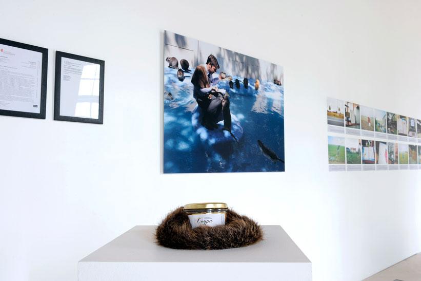 Vue de l'exposition Photographie Laurence Godart  Actions et dispositifs. piège-vidéo, vidéos,  lettres aux ambassades, photographie numérique (120x83cm, dibon), Paté documentaire. Commissariat : COAL 2013 Domaine de Chamarande, France.