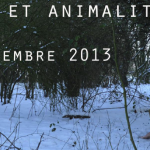 Performances et animalités