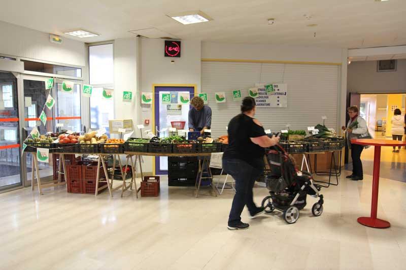 Détail du parcours : Le marché bio in situ. Installation en interaction avec son écosystème.  Photographie Thierry Boutonnier  Parcours santé artistique Autocollant - Découpe. Flers 2014