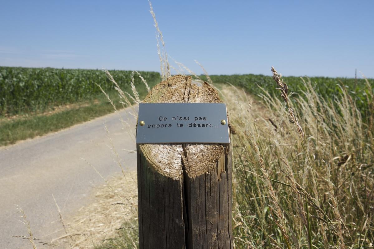 Photographie Thierry Boutonnier Balise avec témoignage. Enquête, chemin balisé, sculpture végétale. Commande du musée de la Chasse et de la Nature. 2014-16, Domaine de Belval - Ardennes.