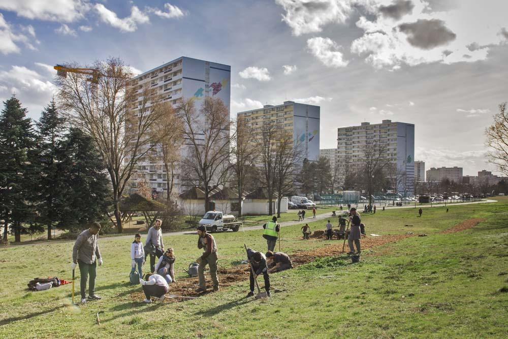 Eau de rose - Sculpture sociale, plantations et distillations participatives, hydrolat de rose Depuis 2013 Photographie : Thierry Boutonnier - Veduta / Biennale d'Art Contemporain 2017