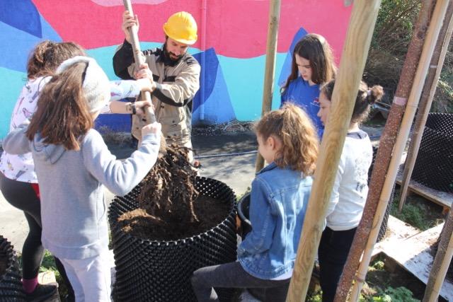 Transplantation avec les enfants de l'école primaire de Nanterre. Pépinière urbaine de Vive les Groues ! Photographie Jessica Leclercq Mars 2019