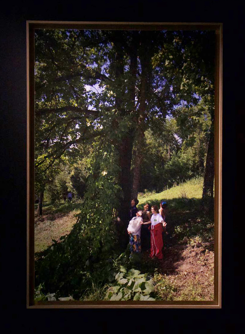Photographie de Thierry Boutonnier des artistes jardinier.ères auprès de la culture-sculpture de 20 mètres de haut à la Ferme de Chosal.  120x80cm, papier contrecollée dibon 28 septembre 2019