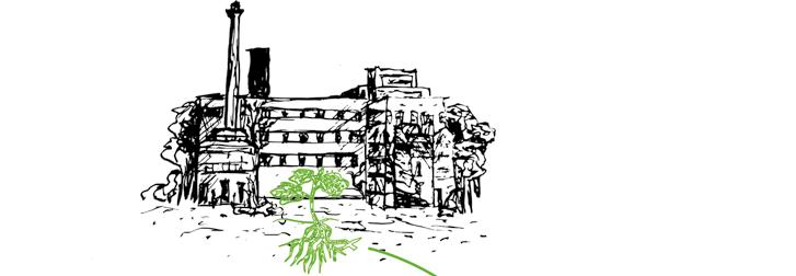 Économie circulaire pour des végétaux d'un paysage ferral urbain pour des micro-écosystèmes foretiers. Dessins de Solène Livosii et Thierry Boutonnier