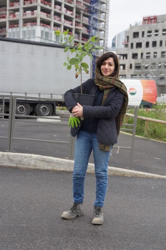 Œuvre collective et végétale